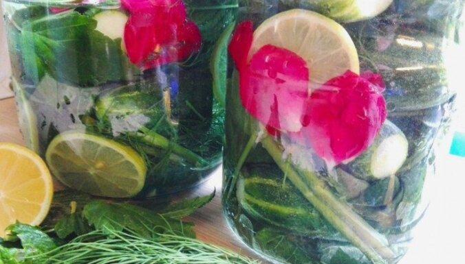 Mazsālītie gurķīši ar piparmētrām, citroniem un rožlapiņām