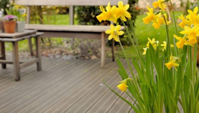 Pavasaris sākas uz terases; ar ko sākt, lai labiekārtotu?