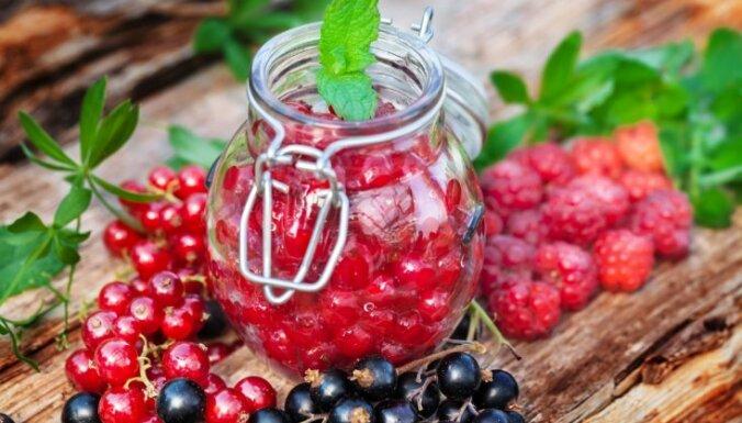 Как не варя и не замораживая сохранить на зиму садовые ягоды
