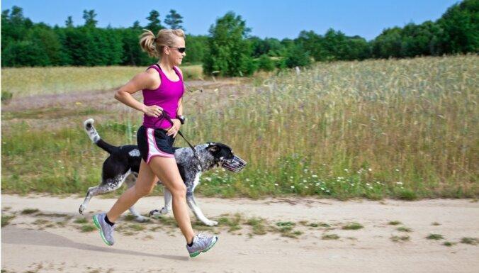 Suņu šķirnes dažādu dzīvesveidu pārstāvjiem: sportiskajiem, aizņemtajiem, kūtrajiem...