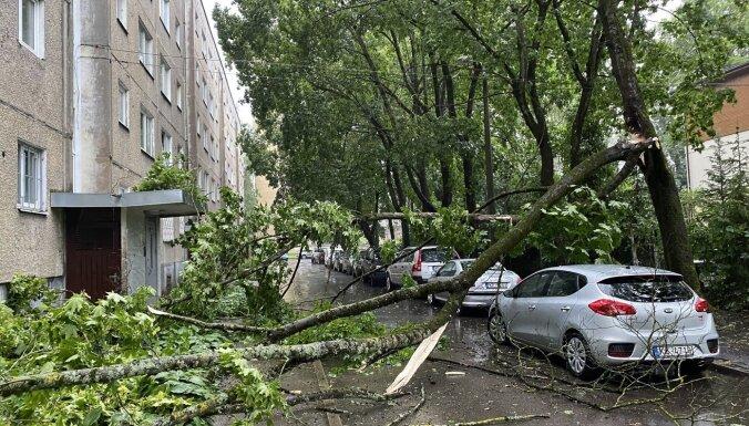 Ливни и штормовой ветер в Риге: повалены деревья, повреждены машины