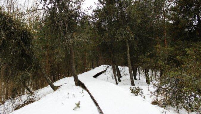 Foto: Bumbu kalniņš – pastaigu taka pārdesmit minūšu brauciena attālumā no Rīgas centra