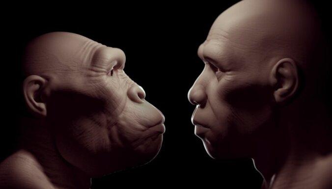 Опровергнута устоявшаяся гипотеза происхождения людей