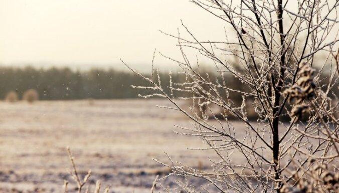 Sestdien gaidāms neliels sniegs, dažviet arī lietus