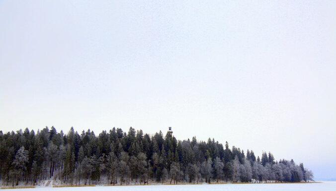 Kooperatīvā 'Mežsaimnieks' apvienojušies jau 740 meža īpašnieku