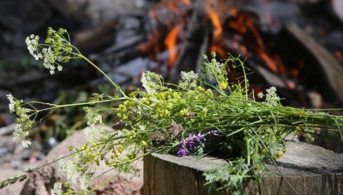 Еврокомиссия: Латвия недостаточно обеспечивает защиту природного многообразия