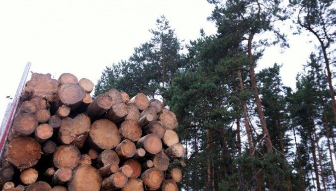 Stingrāk kontrolēs no Ķīnas un Baltkrievijas ievesto koksnes iepakojamo materiālu