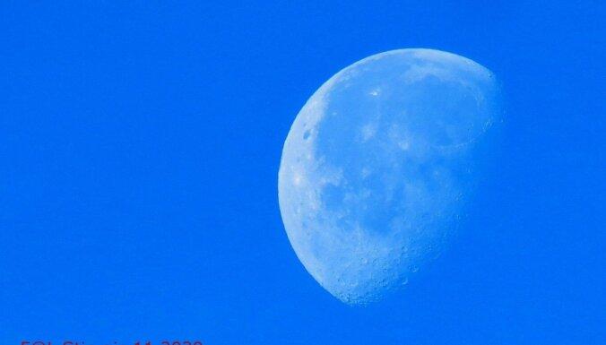 Leons Stiprais: Zilais zemes mēness un neparastākais putnu kāsis fotogrāfa mūžā