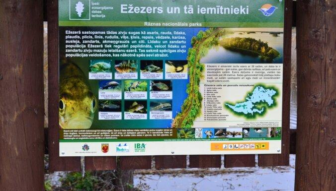 Foto: Divus kilometrus garā Jaundomes dabas taka, kas atklāta nupat
