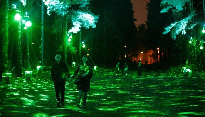 Праздничную подсветку Бикерниекского леса и Анниньмуйжского парка временно прекратят