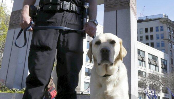 Amerikāņu futbolistu arestē par policijas suņa apriešanu