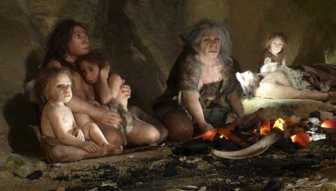 Neandertāliešiem bijušas trīsistabu alas