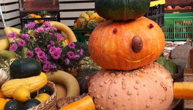 В Риге отмечают праздник урожая — День Микелиса