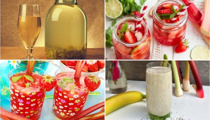 Rabarberu dzērieni: 13 receptes limonādei, kvasam, kompotam un smūtijiem