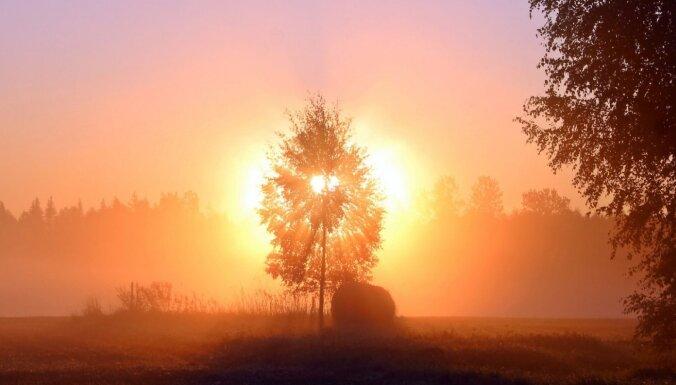 Krāšņi kadri: Saullēkts miglā