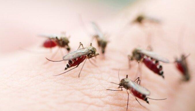 Pieci iemesli, kāpēc daži cilvēki odus pievelk kā magnēts