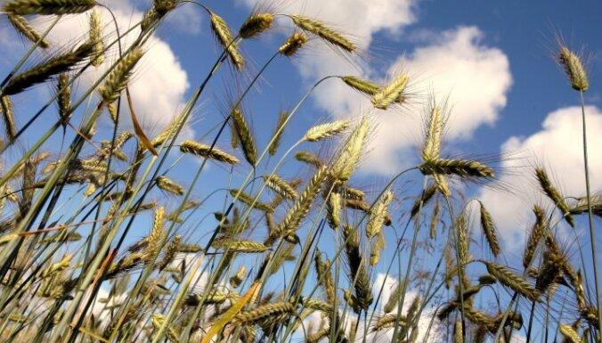 Laikapstākļu dēļ pērn sarucis 'Uzvara-lauks' apgrozījums un peļņa