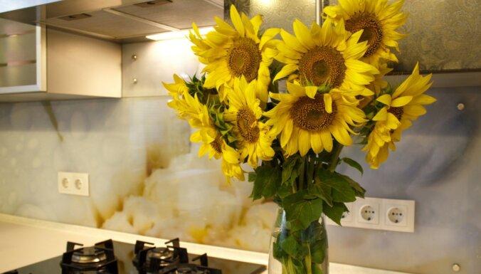 Trīs muļķīgas kļūdas, kas tiek pieļautas virtuves remontā