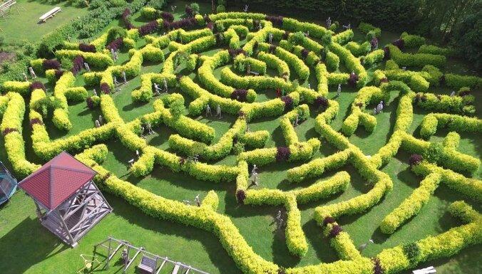 """ФОТО. Семейная поездка: парк """"Беверинские лабиринты"""" с 370 деревянными скульптурами"""