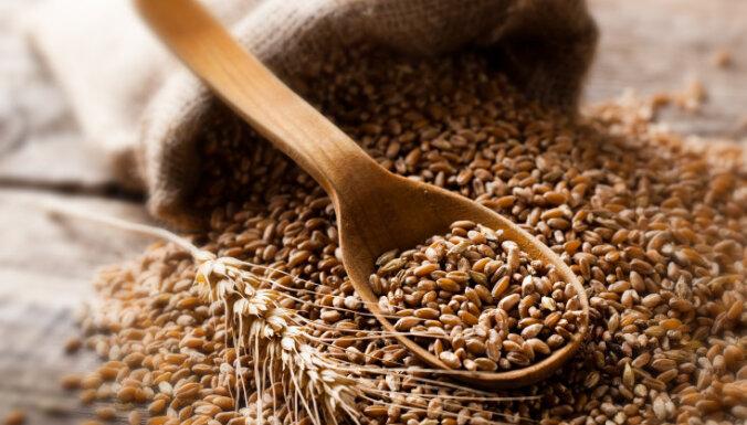 Četri iepriekš tiesāti vīrieši no zemniekiem izkrāpj 211 tonnas graudu