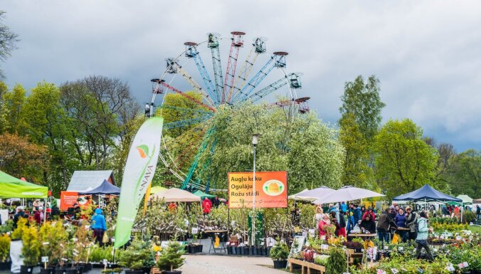 18. septembrī Siguldā notiks grandiozā rudens Stādu parāde