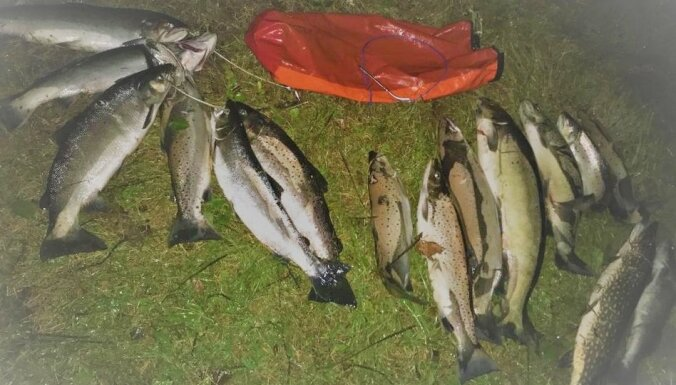 Ventā noķer trīs zemūdens medniekus