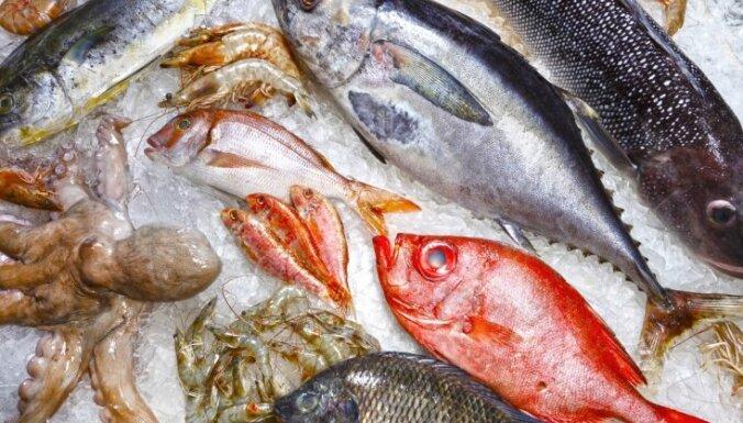 Kad recepte pieprasa balto zivi: ceļvedis zivju pasaulē, lai izvēlētos īsto un vienīgo