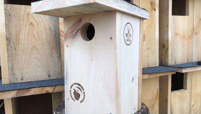 Bez sēžampuļķiem un gludām sienām. Kā izgatavot putniem drošu būri