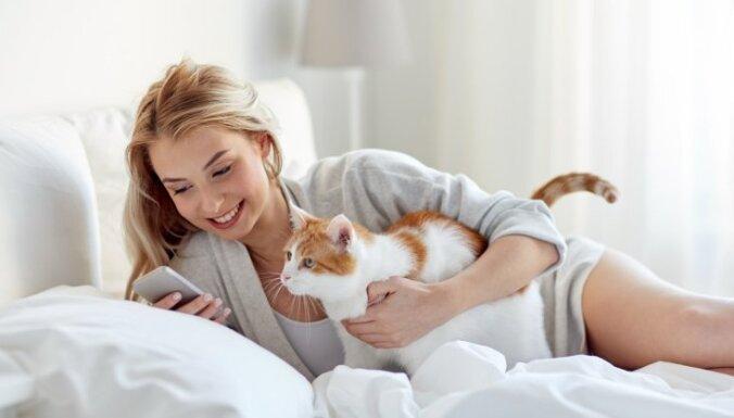 16 кошачьих привычек. Почему они делают ТО и не делают ЭТО?