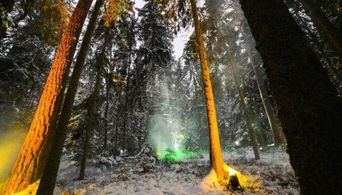 Foto: Maģiskais sveču mežs Skaņajā kalnā