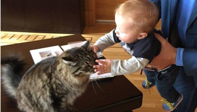 Nils Ušakovs iepazīstinājis dēliņu ar Rīgas kaķiem