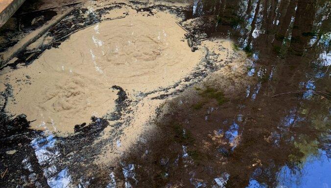ФОТО. Небольшие бурлящие кратеры: Как выглядят необычные родники Вецаутиню