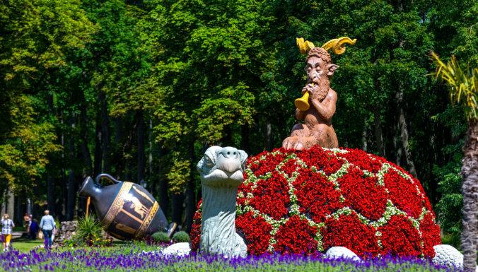 Pakrojas muižā arī šovasar norisināsies ziedu festivāls 'Sapnis vasaras naktī'