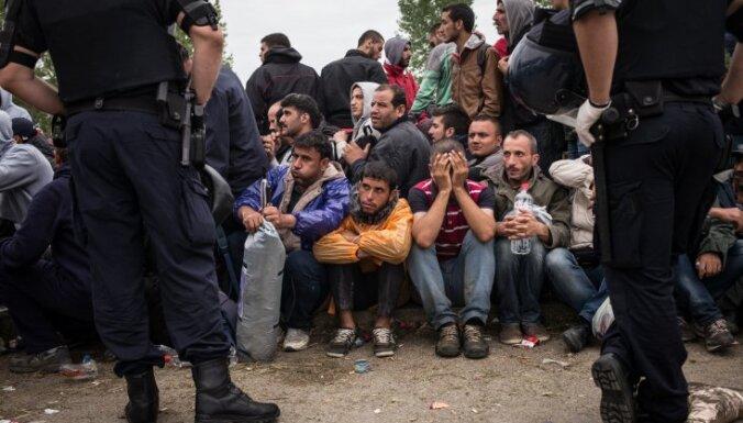 ОЭСР: В ближайшее время убежище в Европе получат до 450 тысяч человек