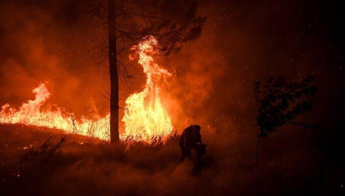 Евросоюз создает воздушный флот для борьбы с лесными пожарами