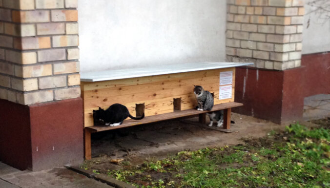 Peļu junkuriņiem Rīgā uzstādītas 10 jaunas kaķu mājiņas