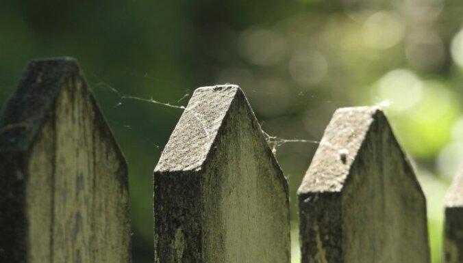 Koka žoga krāsošana – no dēļu sagatavošanas līdz pareizai krāsas izvēlei