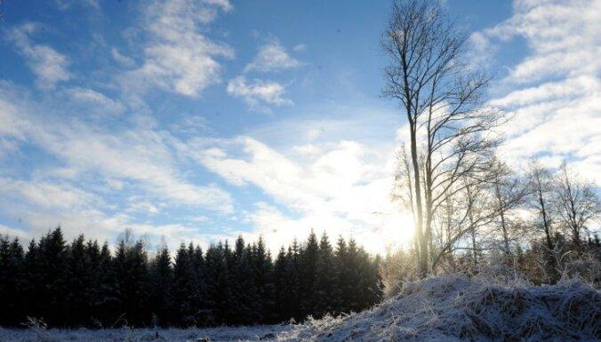 Последний день ноября будет солнечным, но с очень сильным ветром
