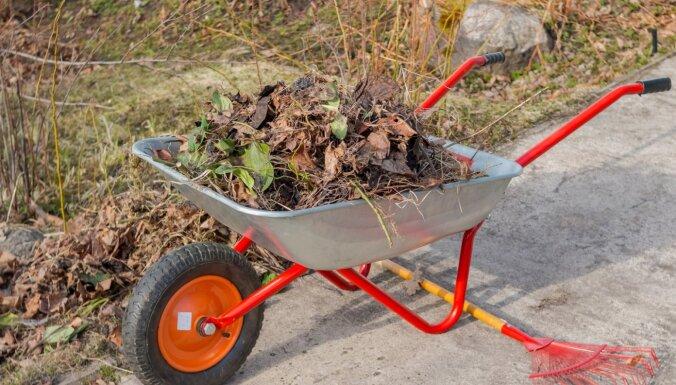 Speciāliste ieskicē darbus dārzā marta izskaņā un nosauc pašlaik sējamās puķes