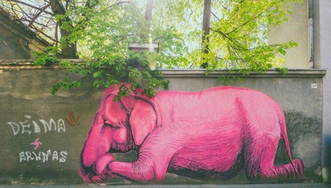 Ielu māksla Kauņā un Latvijā - saskatiet līdzību