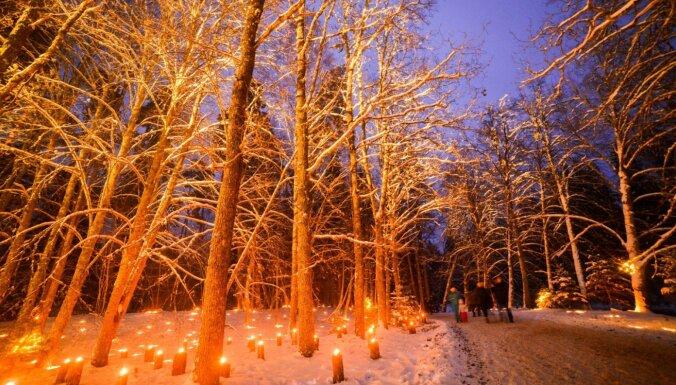 Ziemassvētkos Skaņākalna dabas parkā iedegsies tūkstošiem gaismiņu