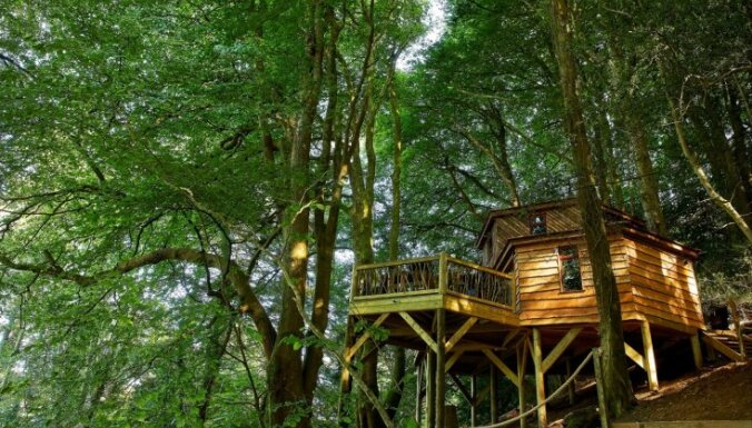 Foto: Pasakaina māja pāris metrus virs zemes – šarmantais koka namiņš Anglijā