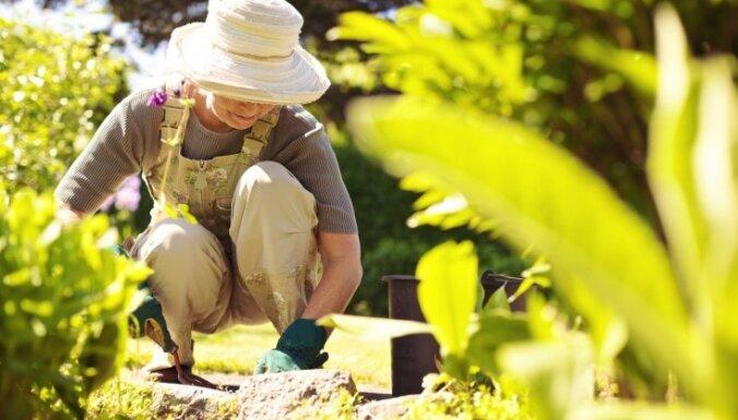 Семь самых распространенных ошибок садовода и как их избежать