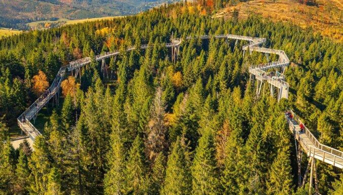 Piedzīvojums virs koku galotnēm Slovākijā: varena pastaigu taka un skatu tornis