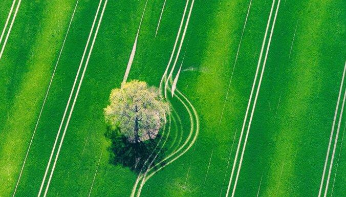 Впечатляющие аэроФОТО: Зелено-желтые поля Латгалии