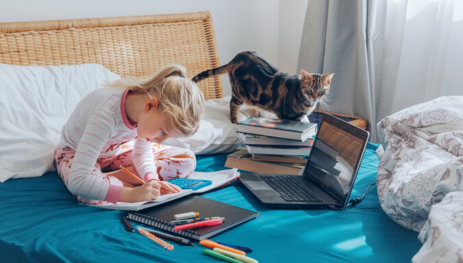 Идет сбор подписей за включение покупки компьютера для детей в оправданные расходы