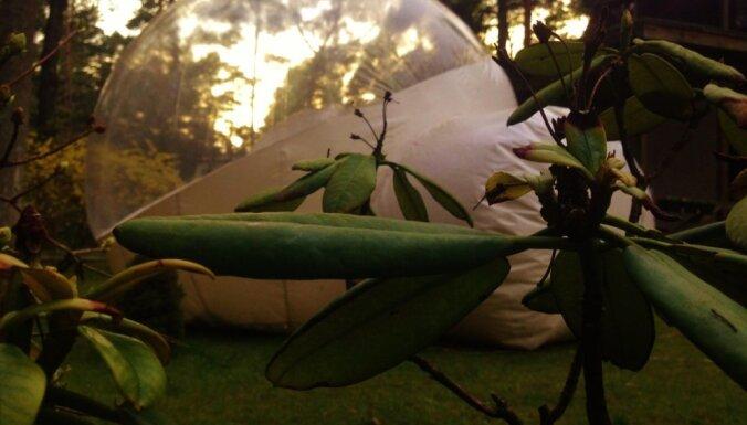 """ФОТО. Палатка-""""пузырь"""" в Булдури — возможно, самая необычная гостиница Латвии"""