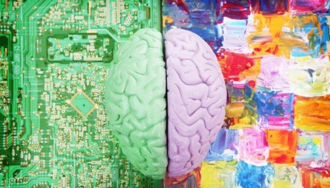 """Бесполый разум. Как нейробиология доказала, что не бывает """"женского"""" и """"мужского"""" мозга"""