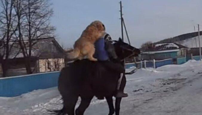 Video: Baškīrs sunim iemācījis jāt ar zirgu