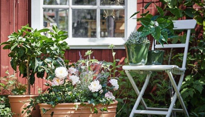 Опрос: жители Латвии планируют потратить накопления на путешествия на ремонт дома